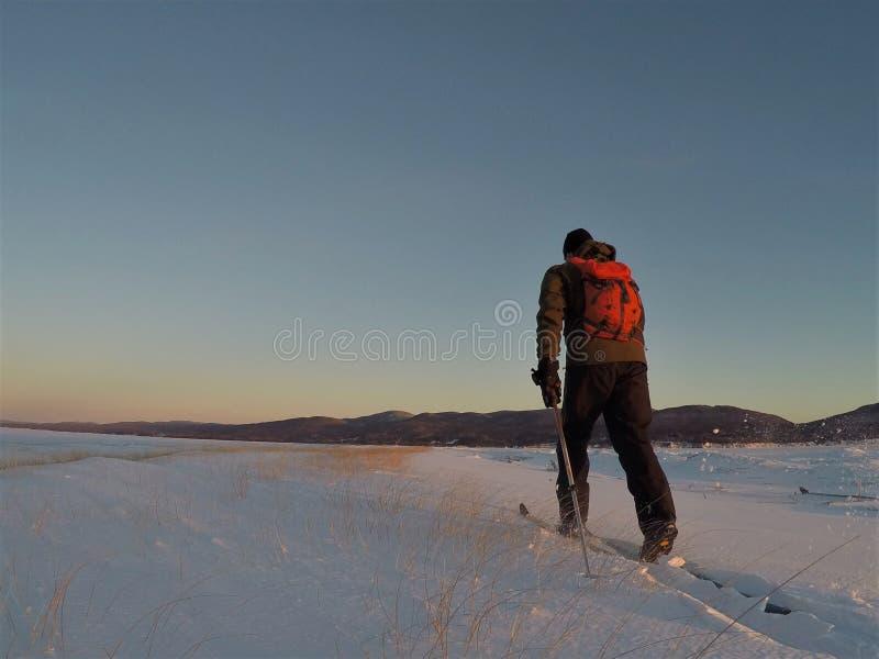 Backcountry längdlöpning på en kall vintermorgon royaltyfria foton