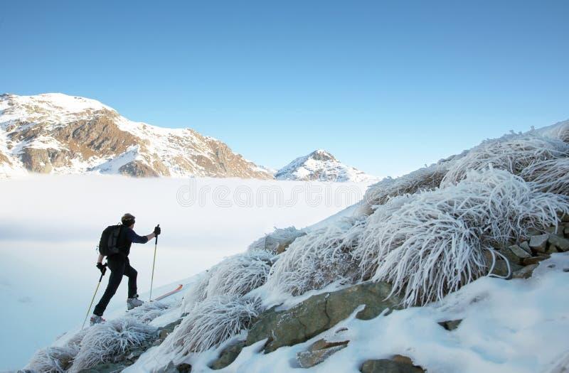 backcountry narciarka fotografia stock