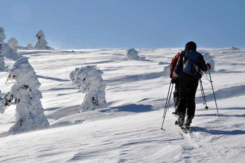 Backcountry narciarki krajoznawstwo w pięknych zim górach fotografia royalty free