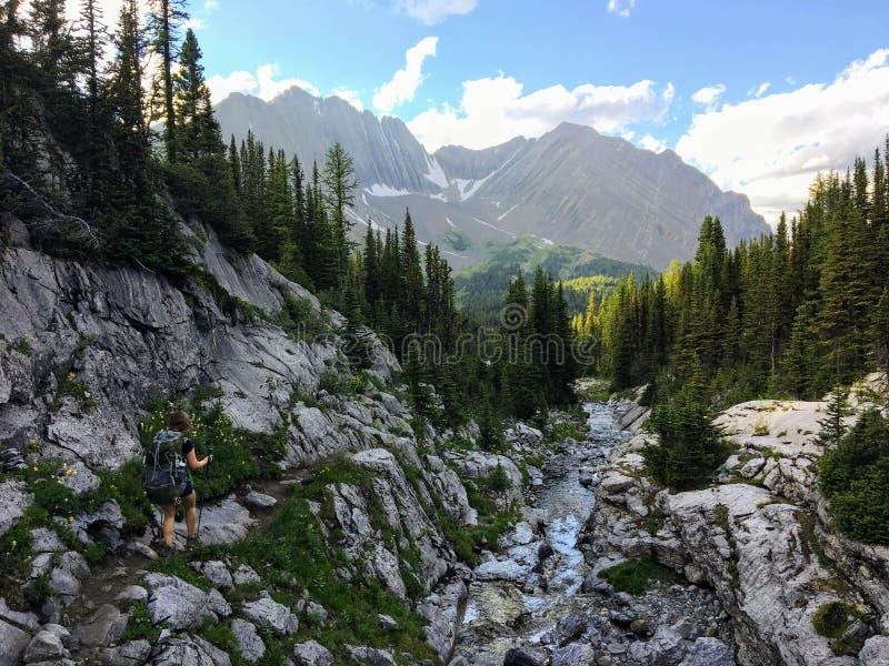 Backcountry que caminha a fuga de Northover Ridge do spectacular em Kana foto de stock
