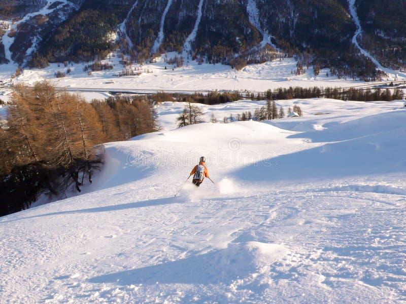 Backcountry skidåkare i ny pulverskidåkning till dalbotten till och med skog i vintern i de schweiziska fjällängarna royaltyfri fotografi