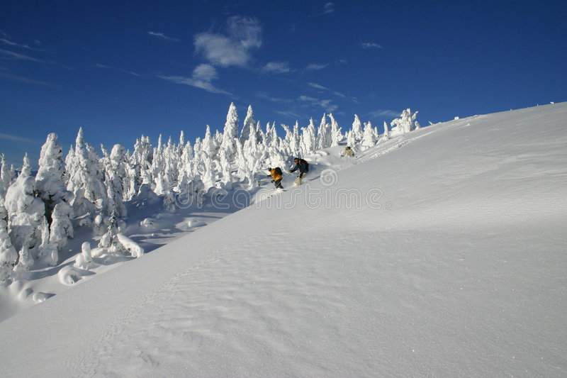 backcountry skidåkning 3 royaltyfri fotografi