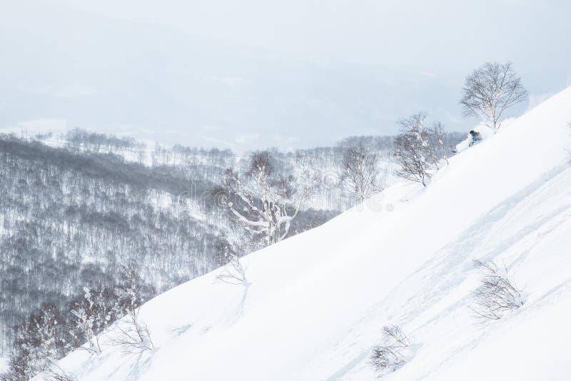 Backcountry skidåkningstup av baksidan av det Niseko berget royaltyfria bilder
