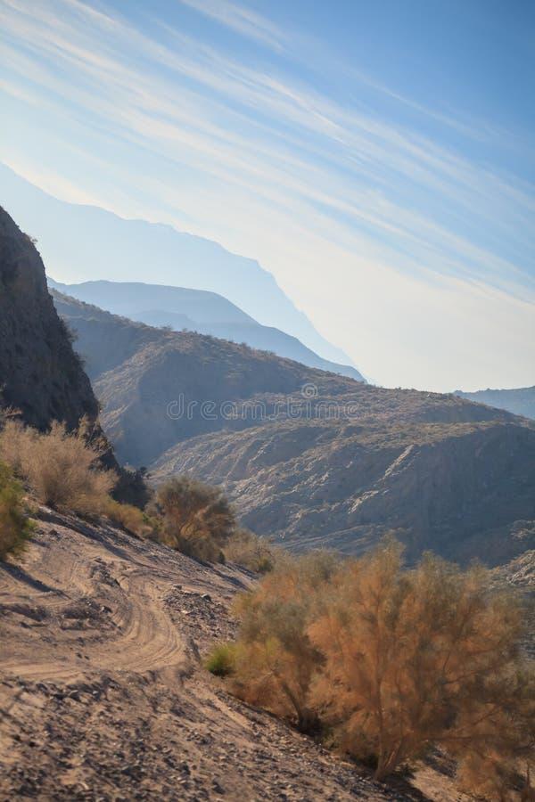 Backcountry väg i Joshua Tree National Park arkivbilder