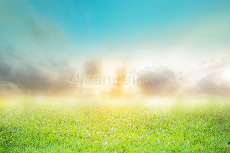 Backdrop blurred nature green sky abstract pattern royalty free stock photography