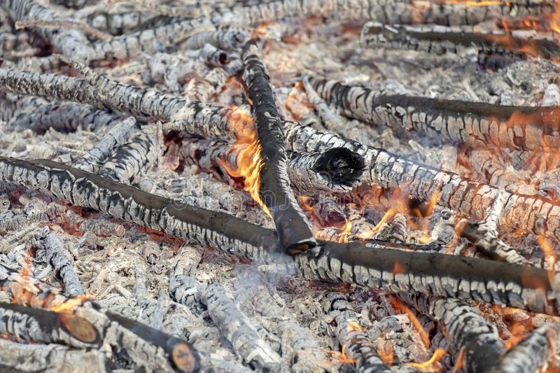 Burning wood in huge bonfire. Natural background of fire and ashes with copy space stock photos