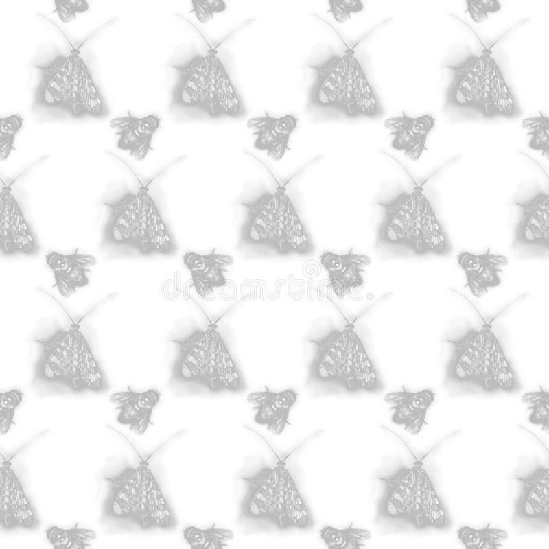 Backdrop with flies and butterflies. On white background vector illustration