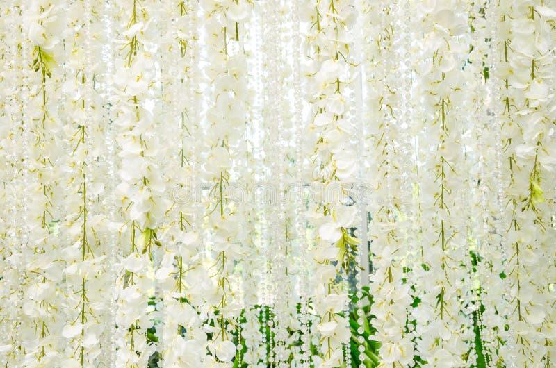 Backdrop for wedding white flowers stock image image of marriage backdrop for wedding white flowers beautiful white flower for wedding decoration mightylinksfo