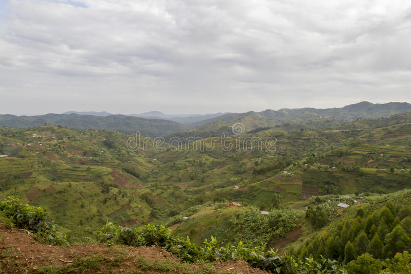 Backelandskap Rwanda, Afrika arkivbild