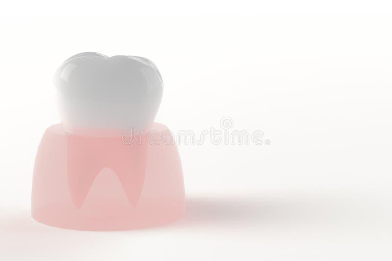 Backenzähne und Gummi stock abbildung