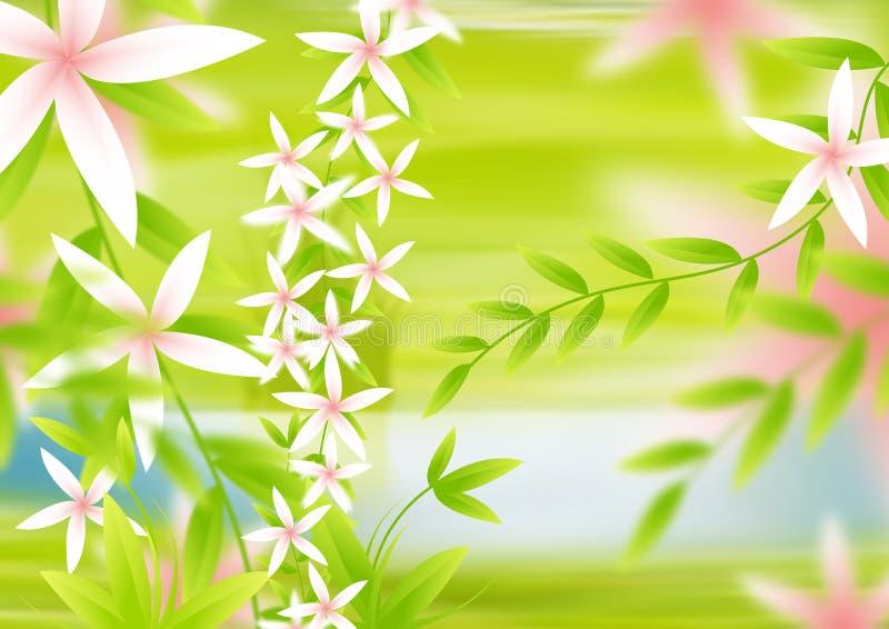 backgorund kwiat obrazy royalty free