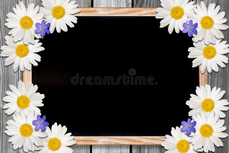 Backgound de la pizarra y de las flores con el espacio de la copia foto de archivo