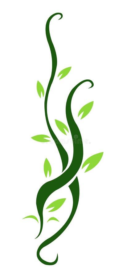 Backgound floral da videira ilustração stock