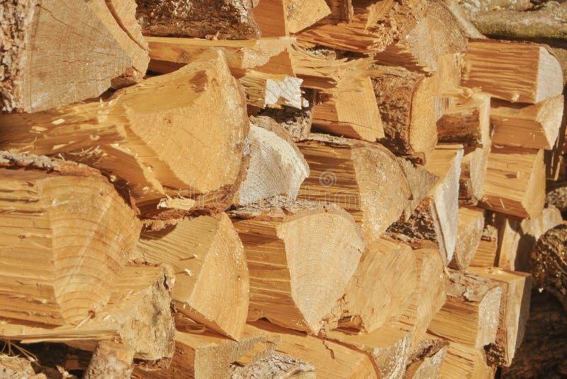 Backgr de madeira tonificado rústico natural do moderno do instagram do efeito do filme fotografia de stock royalty free