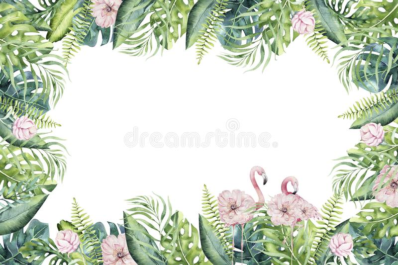 Backgraund tropical tirado mão do invirtation da aquarela do flamingo Ilustrações cor-de-rosa exóticas do pássaro, árvore da selv ilustração stock