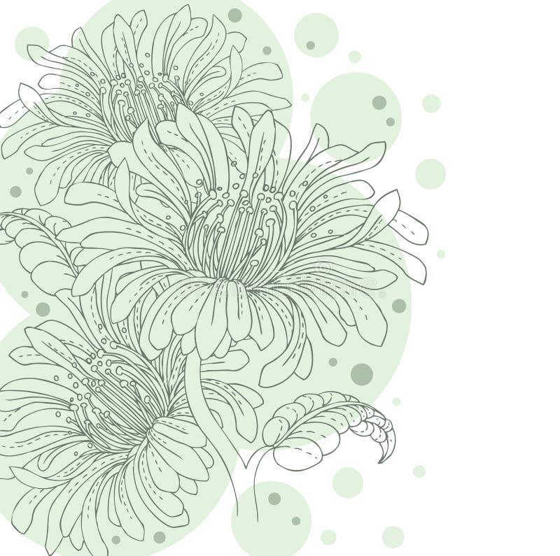 Backgrond floral ilustração do vetor