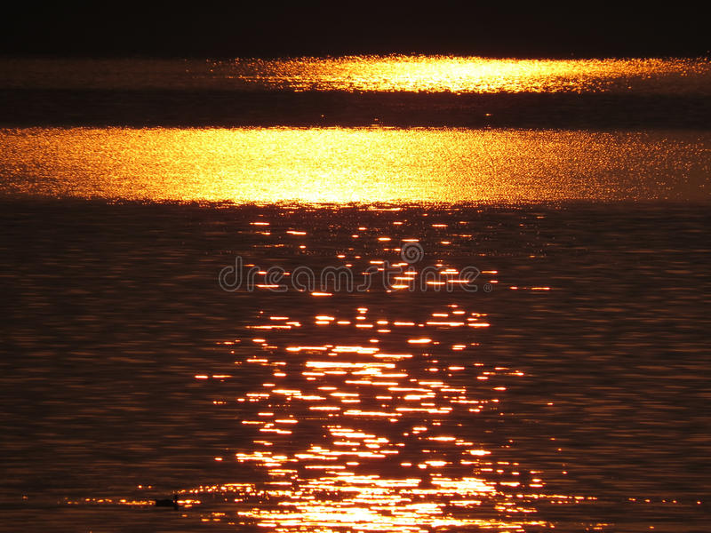 Golden Water Background Royalty Free Stock Photos