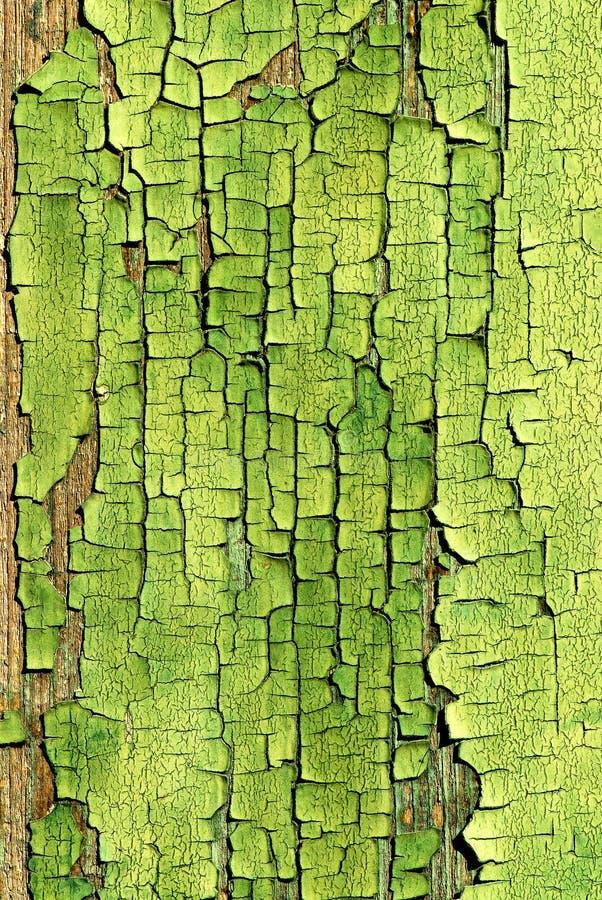 backgroun το πράσινο χρώμα στοκ εικόνες με δικαίωμα ελεύθερης χρήσης