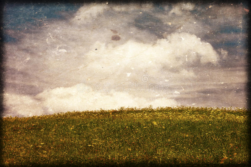 Download Background stock photo. Image of grunge, weathered, meadow - 24466740