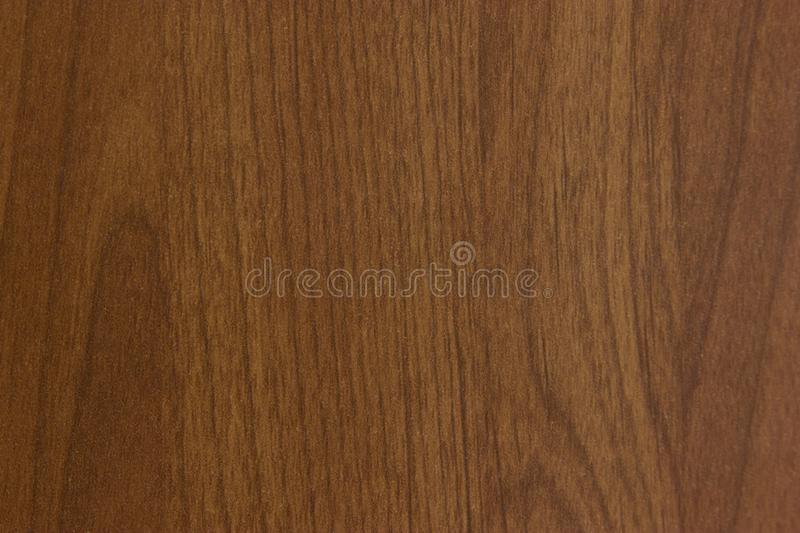 Texture. Background abstract designer glare web brown tree structure royalty free stock image