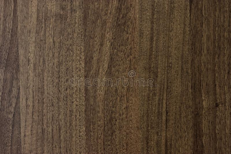 Texture. Background abstract designer glare web tree structure brown royalty free stock photos