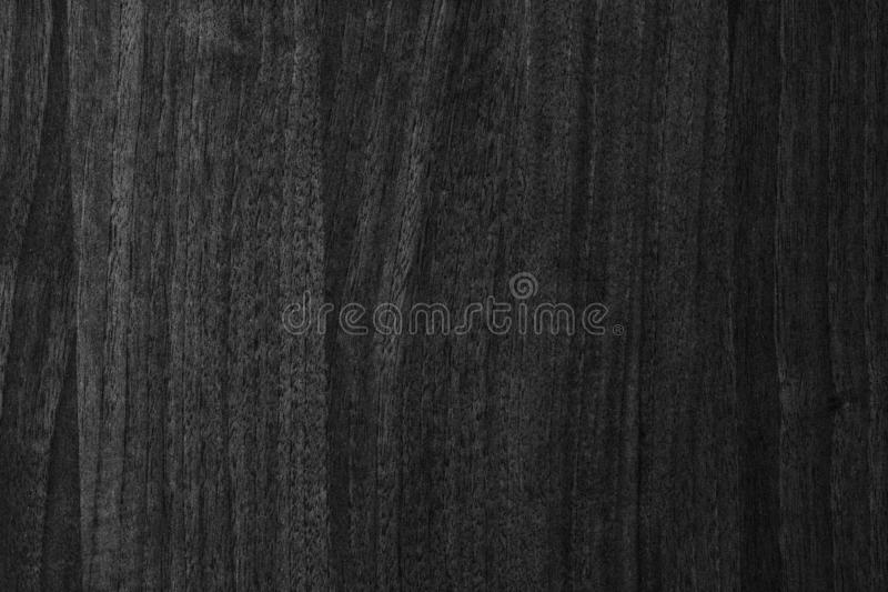 Texture. Background abstract designer glare web tree structure black White stock images