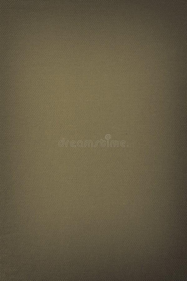 Texture. Background abstract designer glare web Venetka royalty free stock image