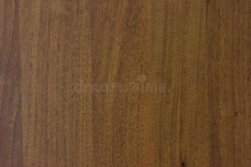 Texture. Background abstract designer glare web tree structure stock photo