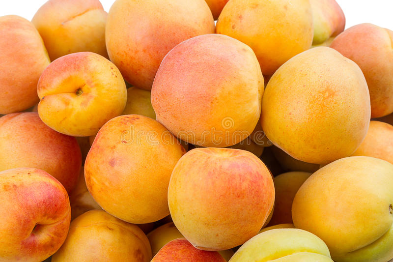 Download Background of the apricots stock image. Image of color - 26012161