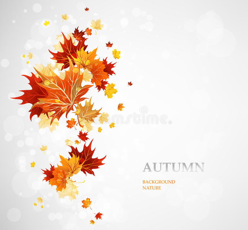 Background with autumn leaves royalty free illustration