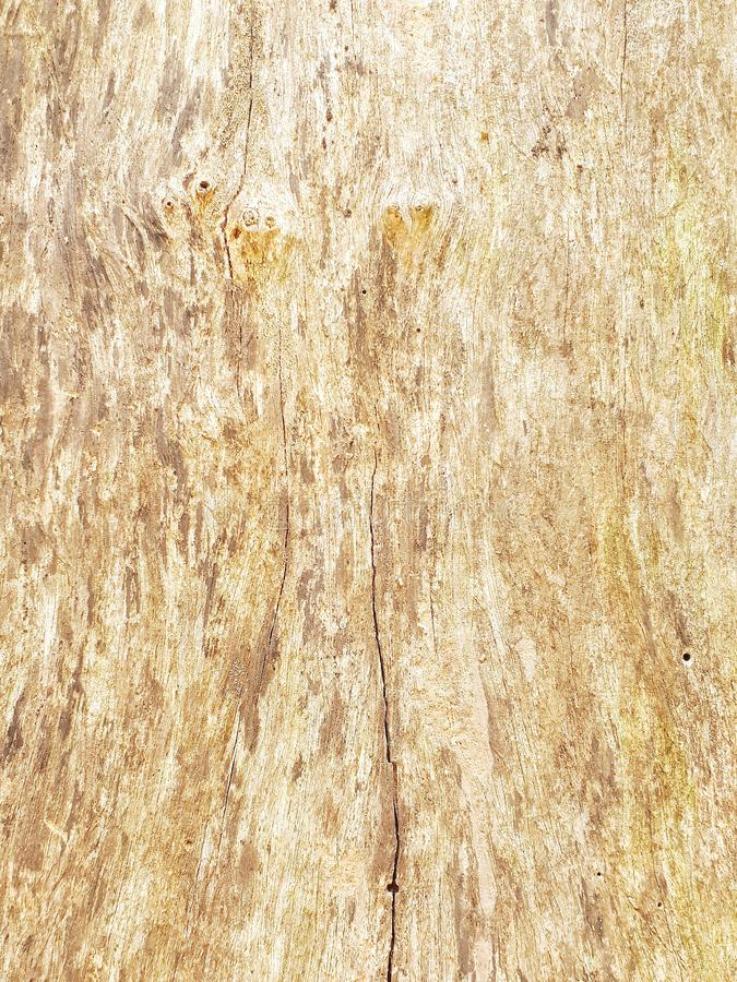 Background. Paintedwood, splat, slat, woodwall royalty free stock image