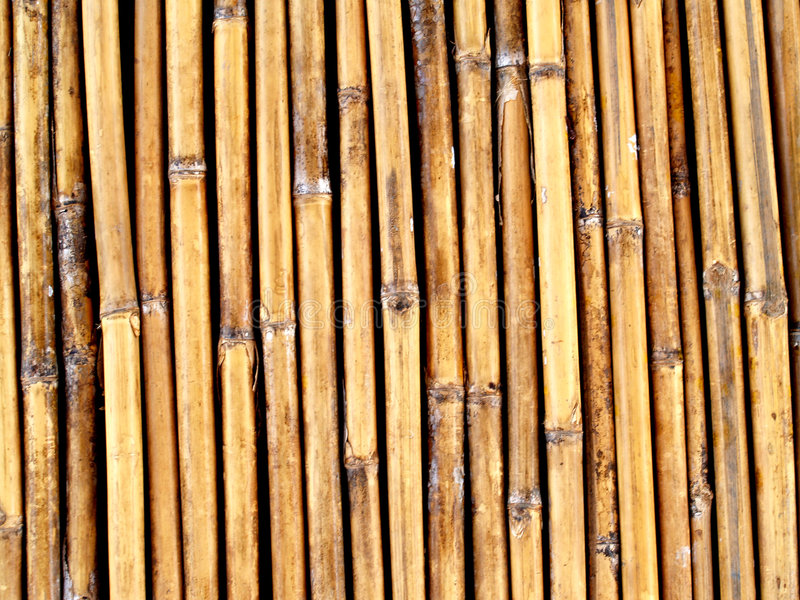 Download Background  Of  Bamboo Royalty Free Stock Image - Image: 4396296