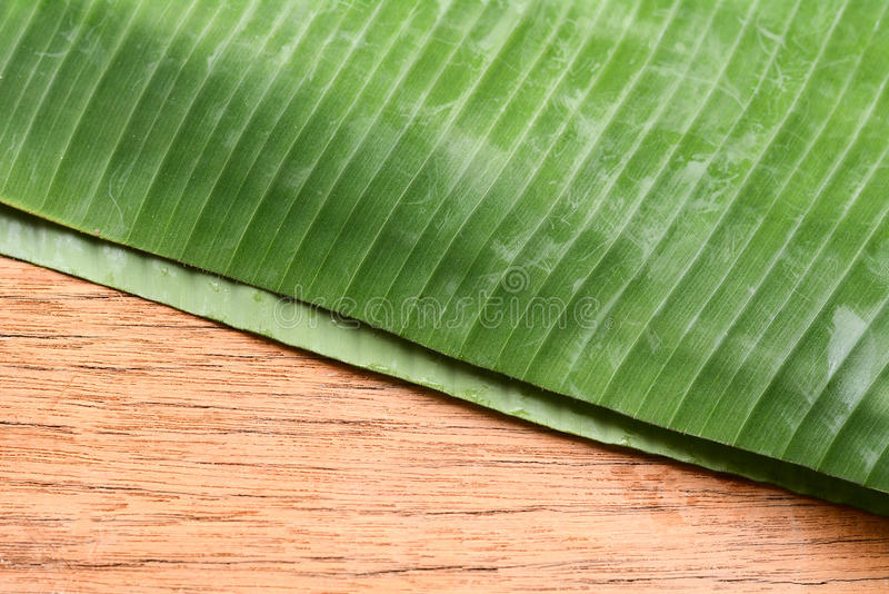 Background banana leaves on wooden floor. royalty free stock images