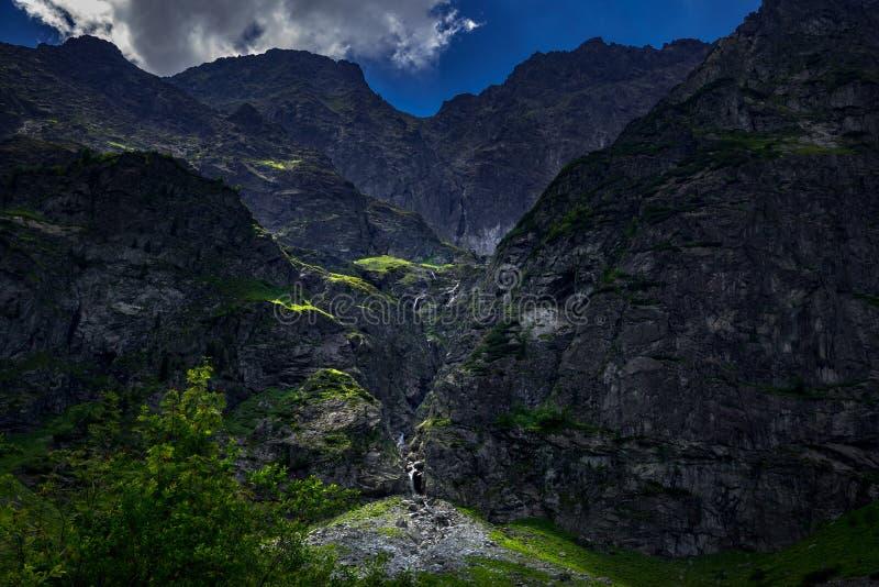 Background, beautiful, blue, clear, creek, environment, europe, fishing, flow, forest, fresh, green, high, hike, hill, idyllic, la stock image