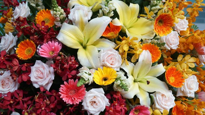 Background of beautiful flowers blossom Rose Gerbera Lily Orchids stock photo
