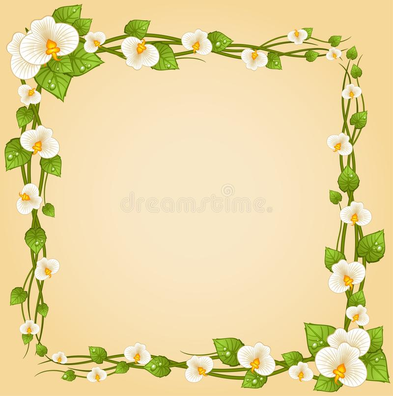 Download Background With Beautiful Orchids Stock Vector - Image: 18154229