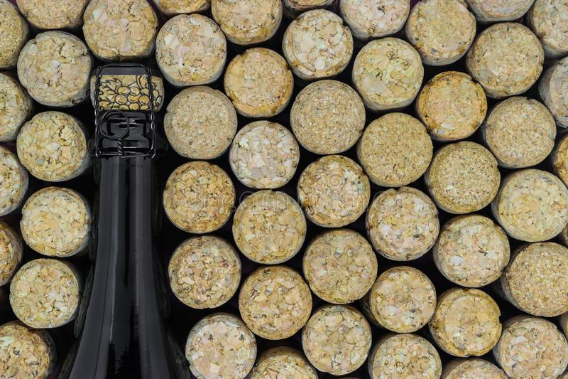 Background of black champagne bottle surrounded of many champagne corks.  royalty free stock image