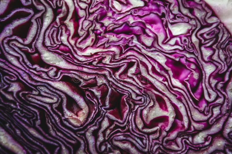 Background of the blue cabbage in the cut, macrophotography. Large plan.  stock images