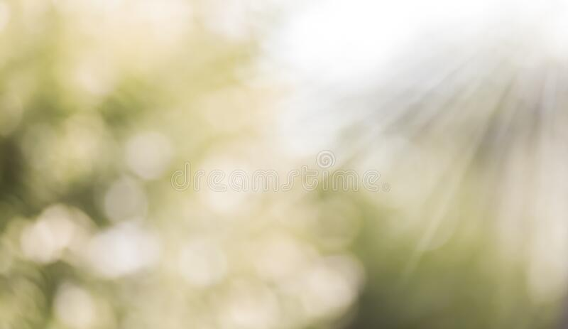 Background with Blurred bokeh and sunray. Blurred bokeh background with soft light and sunray stock image