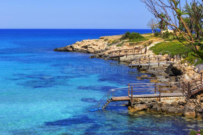 The background is blurred, landscape, view of the Mediterranean Sea in the bay near Protaras, and a blooming stone coast stock images