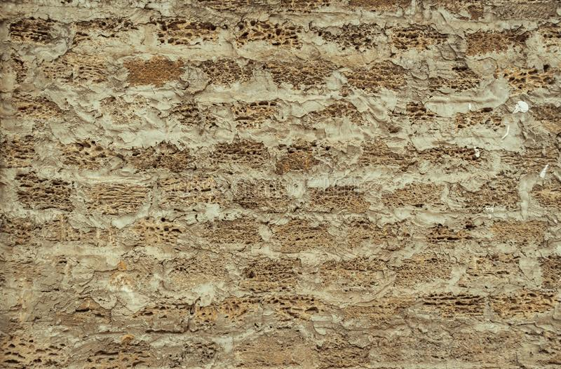 Background of a brick wall made of shell, the texture of porous stone from shells for the manufacture of building blocks stock photography