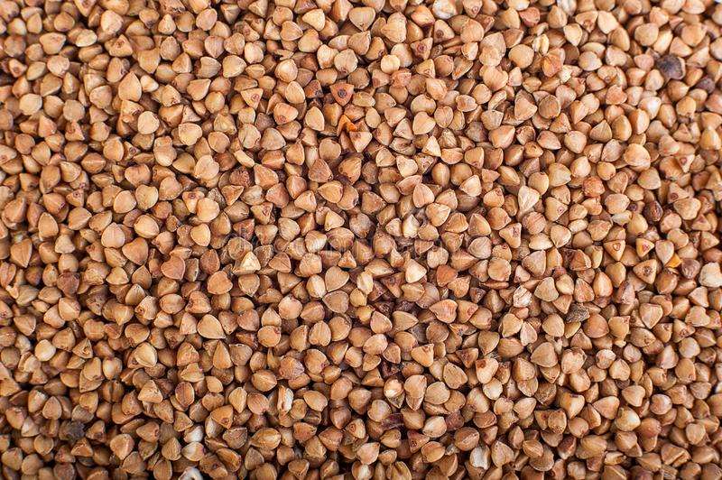 Background of buckwheat seed royalty free stock images