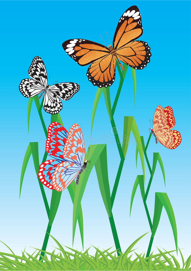 Background with butterfly. Vector. stock illustration