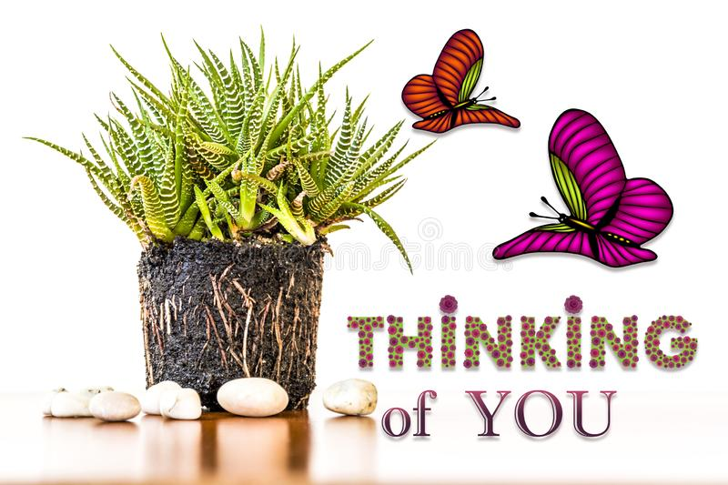 Thinking You Stock Images - Download 4,482 Royalty Free Photos