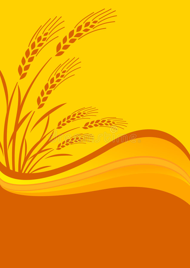 Download Background With Cereal Crop Stock Vector - Illustration of plant, background: 9270408