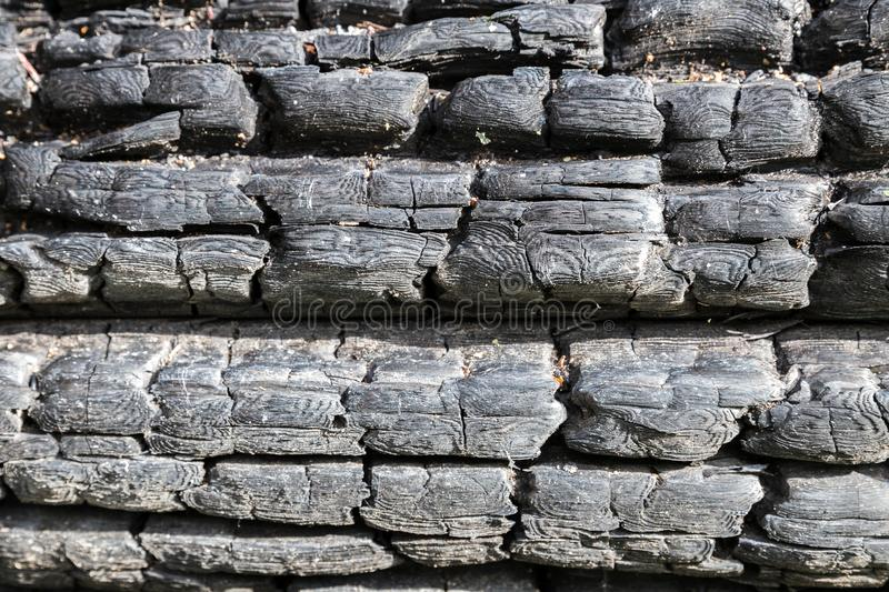 Background of charred logs. Abstract background, texture of black charred logs stock photo