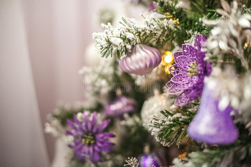 Background from a Christmas tree decorated in blue and purple close-up. Greeting card from a Christmas tree with purple decoration royalty free stock photography