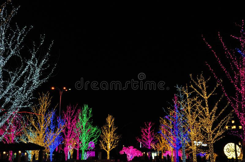 Christmas day. Festival christmas tree lights background royalty free stock photography