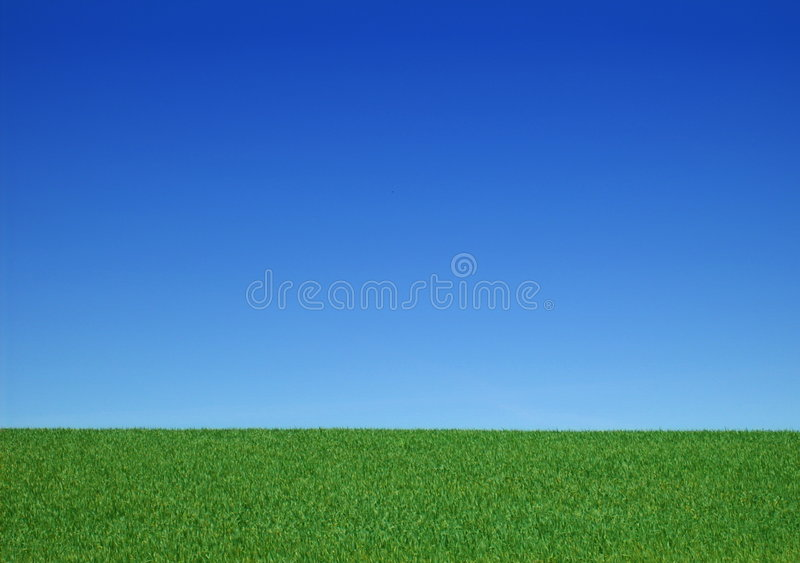 Download Background - Clear - Meadow With Blue Sky Stock Image - Image: 6960015