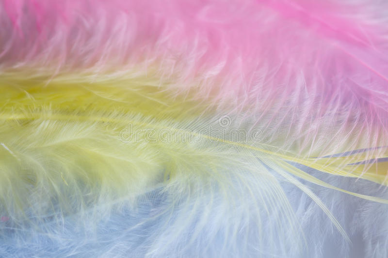 Background of close up image of pastel pink, yellow and blue feathers.  stock photography